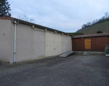 Location Local industriel 70m² Saint-Romain-le-Puy (42610) - photo