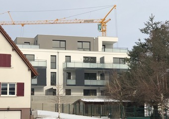 RESIDENCE NEUVE ET ENSOLEILLEE AU COEUR DES 3 FRONTIERES Hagenthal-le-Haut (68220)