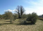 Sale Land La Tour-d'Aigues (84240) - Photo 4