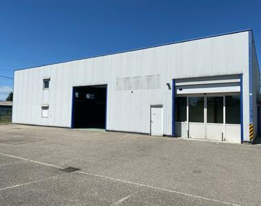 Location Local industriel 400m² Sausheim (68390) - photo