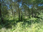 Vente Terrain 3 500m² Grambois (84240) - Photo 2