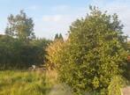 Sale Land 785m² Dannes (62187) - Photo 3