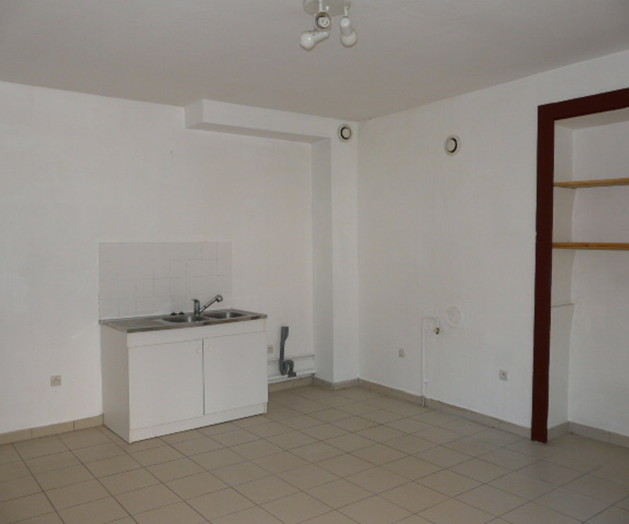 Location Appartement 3 pièces 45m² Thizy (69240) - photo
