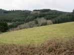 Vente Terrain 2 000m² Lamure-sur-Azergues (69870) - Photo 1