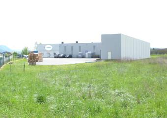 Vente Commerce/bureau 1 250m² Vinay (38470) - photo