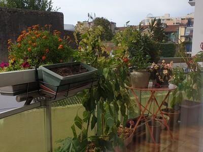 Vente Appartement 2 pièces 49m² Pau (64000) - Photo 4