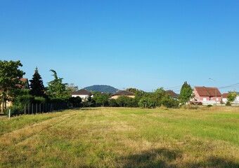 Vente Terrain 352m² Scherwiller - Photo 1