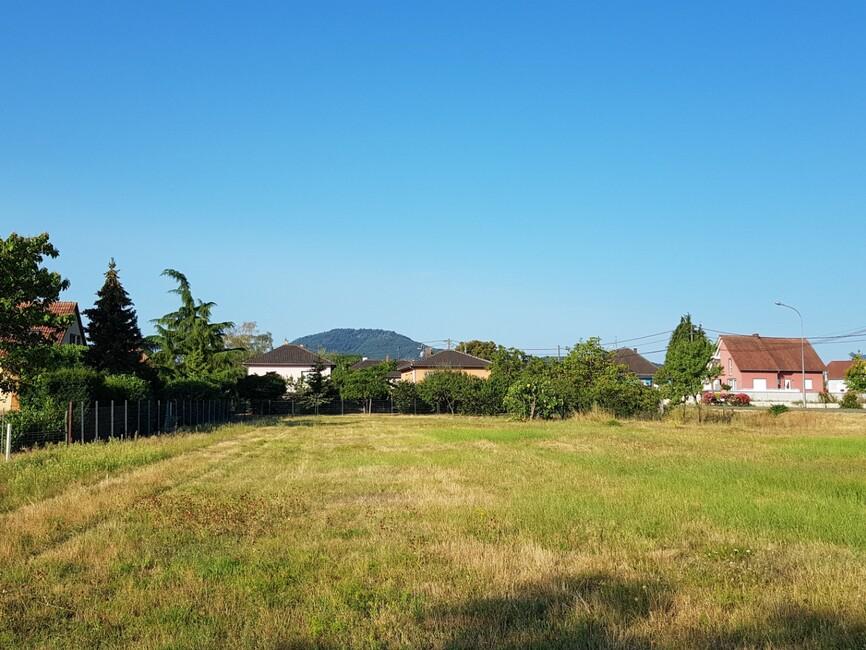 Vente Terrain 319m² Scherwiller - photo