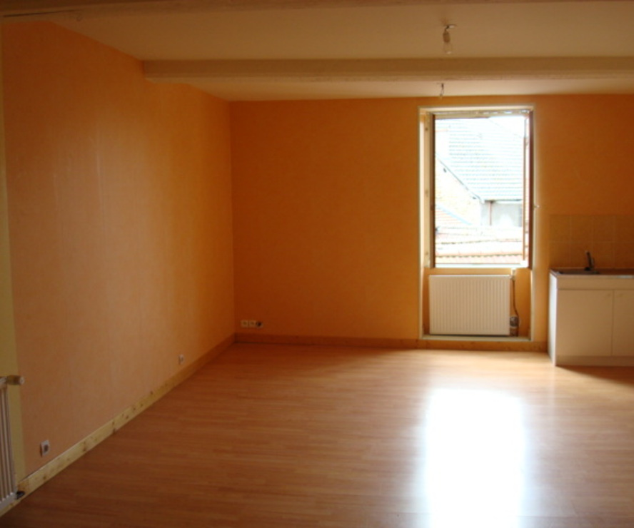 Vente Appartement 46m² La Clayette (71800) - photo