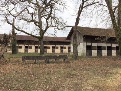 Vente Maison 11 pièces 280m² Mont-de-Marsan (40000) - Photo 4