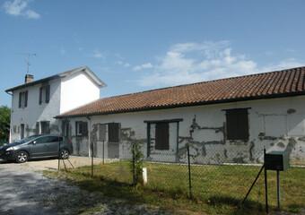Vente Maison 9 pièces 184m² Saint-Martin-de-Hinx (40390) - photo