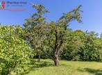 Vente Terrain 872m² Pontcharra-sur-Turdine (69490) - Photo 4