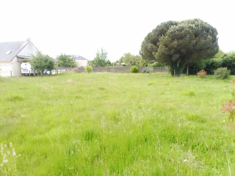 Vente Terrain 259m² Donges (44480) - photo