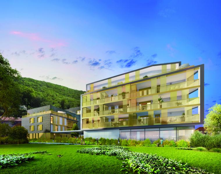 Location Appartement 2 pièces 45m² Saint-Martin-le-Vinoux (38950) - photo