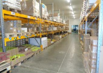 Vente Local industriel 6 177m² Aiguillon (47190) - photo