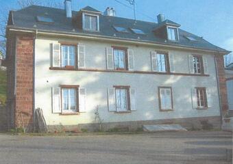 Vente Immeuble 312m² Labaroche (68910) - photo
