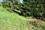Sale Land Veurey-Voroize (38113) - Photo 5