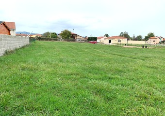 Vente Terrain 964m² Saint-Forgeux-Lespinasse (42640) - Photo 1