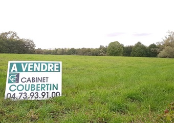 Vente Terrain 4 371m² Aigueperse (63260) - Photo 1
