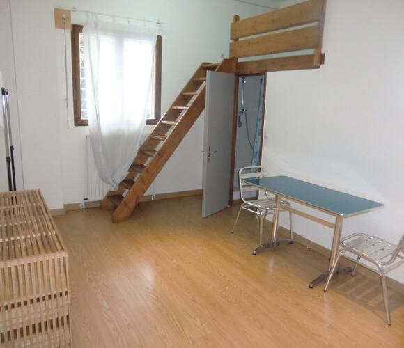 Location Appartement 1 pièce 19m² Grenoble (38100) - photo