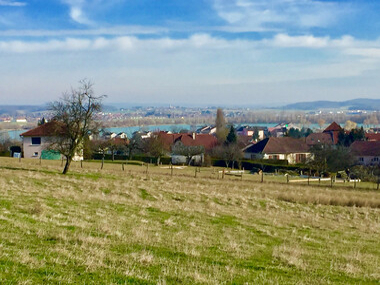 Vente Terrain 11 501m² A 5 min de Vesoul - photo