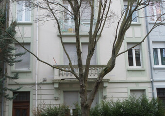 Vente Immeuble 260m² Mulhouse (68200) - photo