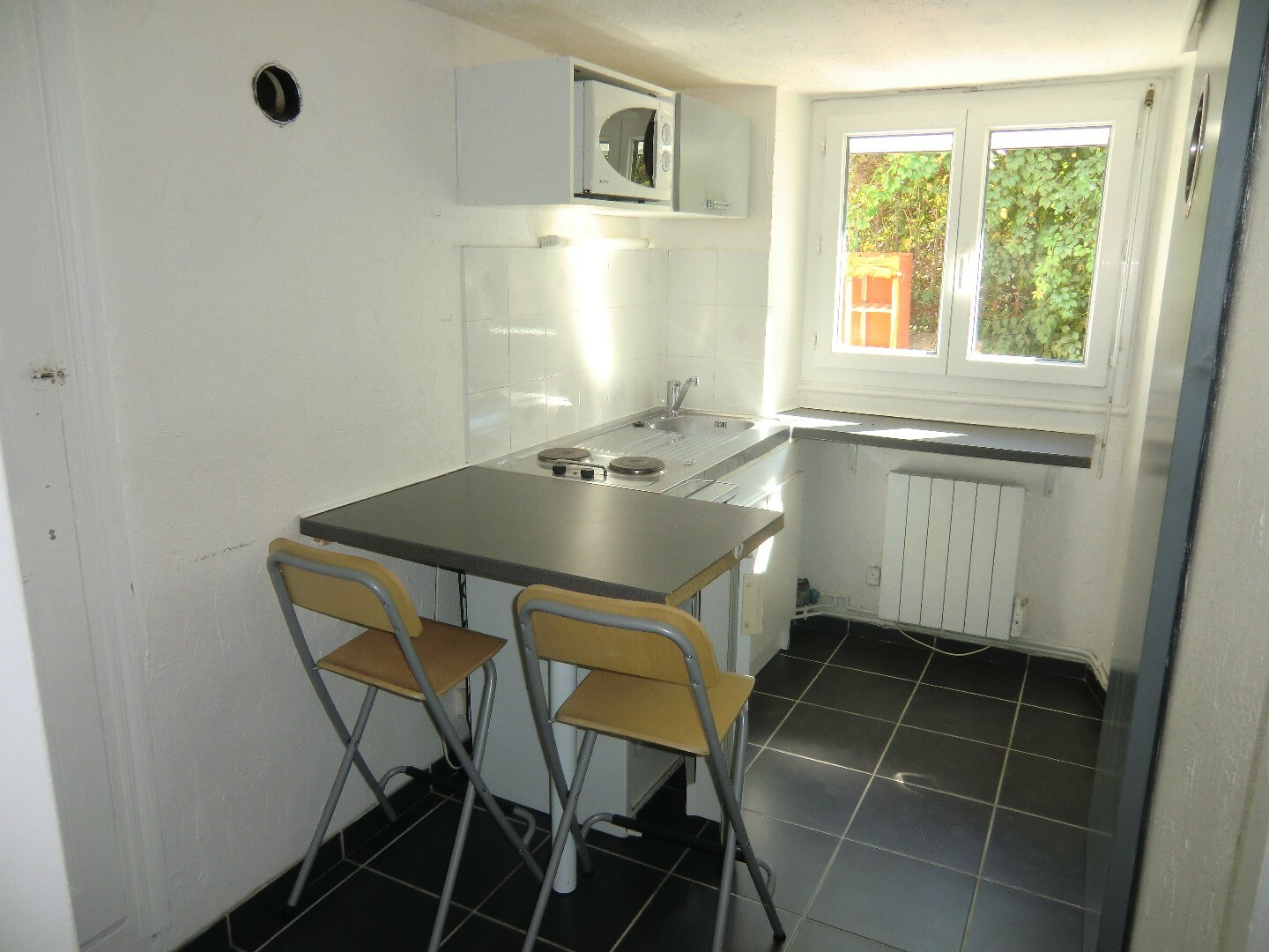 Charmant Location Appartement 1 Pièce 19m² Grenoble (38000) - Photo