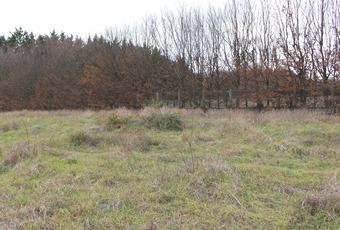 Vente Terrain 890m² Villefranche-sur-Saône (69400) - Photo 1