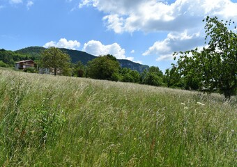 Vente Terrain 400m² Coublevie (38500) - Photo 1