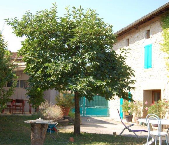 Vente Maison 7 pièces 162m² Eymeux (26730) - photo