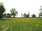 Vente Terrain 1 300m² Wailly-Beaucamp (62170) - Photo 1
