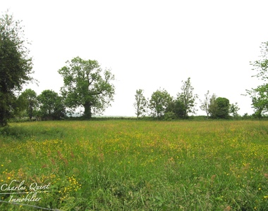 Vente Terrain 1 490m² Wailly-Beaucamp (62170) - photo