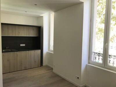 Location Appartement 1 pièce 16m² Saint-Étienne (42000) - Photo 2