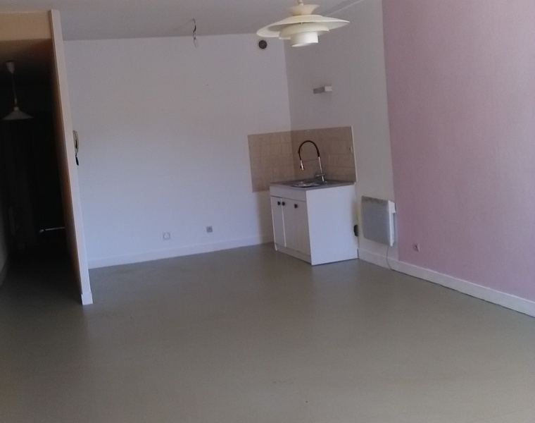 Location Appartement 2 pièces 59m² Thizy (69240) - photo