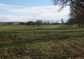 Vente Terrain 10 000m² Gimont (32200) - photo 2