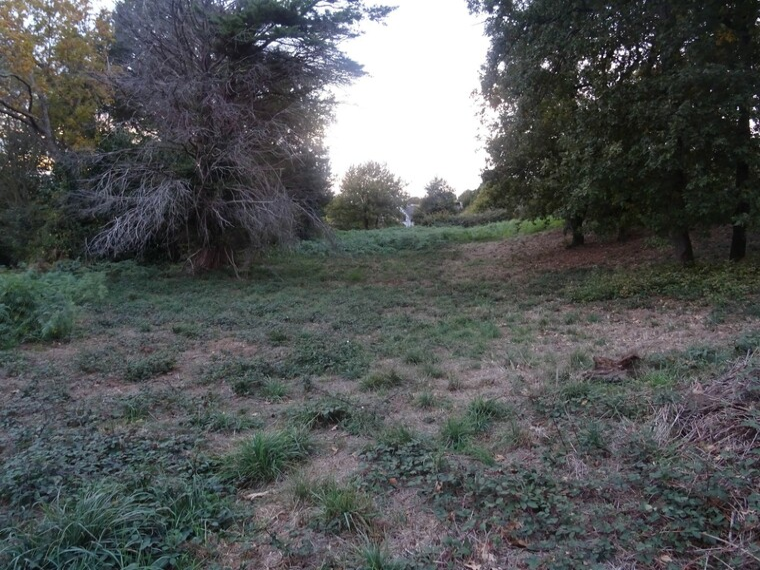 Vente Terrain 700m² Savenay (44260) - photo