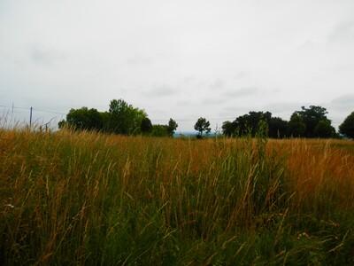 Vente Terrain 3 015m² Estibeaux (40290) - Photo 2