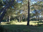 Sale Land Puget (84360) - Photo 2