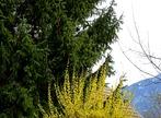 Vente Maison / Chalet / Ferme 6 pièces 123m² Arenthon (74800) - Photo 31