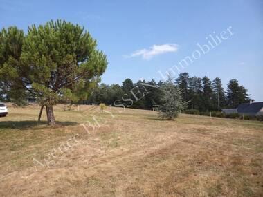 Vente Terrain 3 100m² Cosnac (19360) - photo