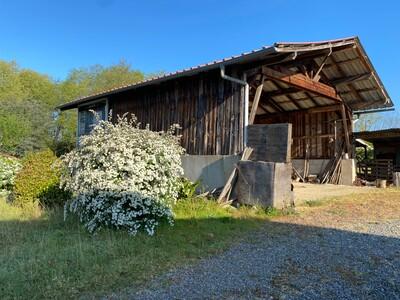 Vente Maison 4 pièces 123m² Seyresse (40180) - Photo 4