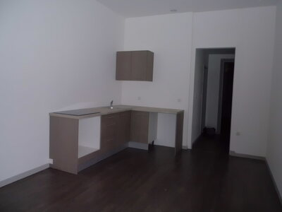 Location Appartement 3 pièces 51m² Saint-Étienne (42100) - photo