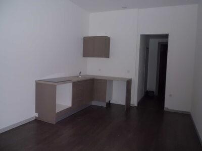 Location Appartement 3 pièces 51m² Saint-Étienne (42100) - Photo 3
