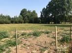 Sale Land 1 100m² Campagne-lès-Hesdin (62870) - Photo 2