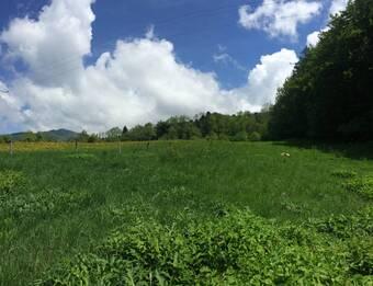 Vente Terrain 2 100m² Onnion (74490) - photo