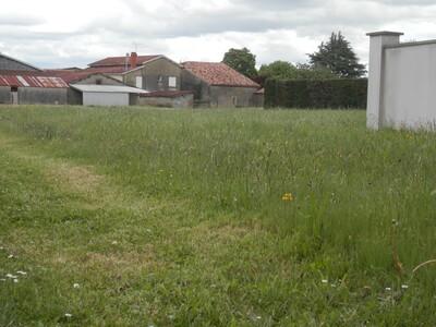 Vente Terrain 1 550m² Castel-Sarrazin (40330) - Photo 3