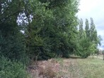 Vente Maison 120m² Lestrem (62136) - Photo 5