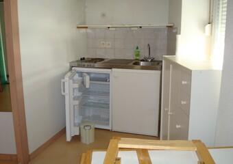 Location Appartement 1 pièce 20m² Grenoble (38000)