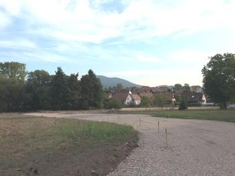 Douceur de vie, au cœur de la vallée Dieffenbach-au-Val (67220)