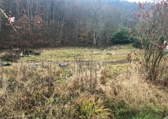 Vente Terrain 2 200m² Guebwiller (68500) - photo